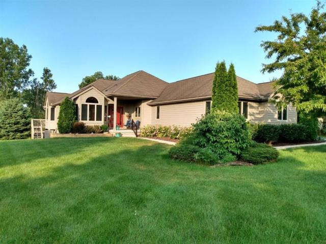 8791 E Stoneyfield Drive, Dexter Twp, MI 48130 (#543266898) :: GK Real Estate Team