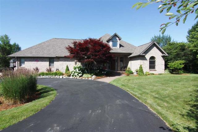 2201 Chestnut Ridge, Thomas Twp, MI 48609 (#61031386845) :: GK Real Estate Team