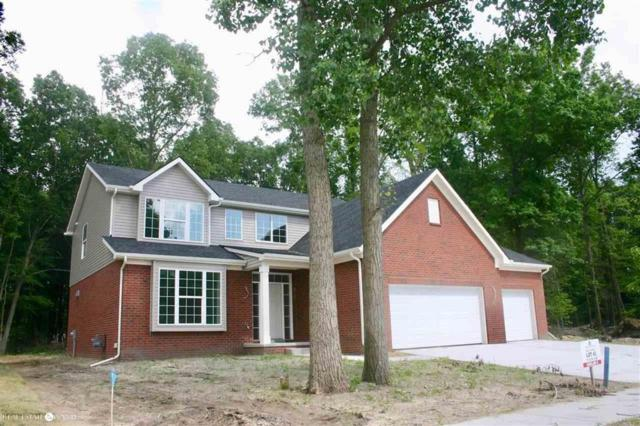 21059 Marvin Ave, Brownstown Twp, MI 48174 (MLS #58031386846) :: The Toth Team