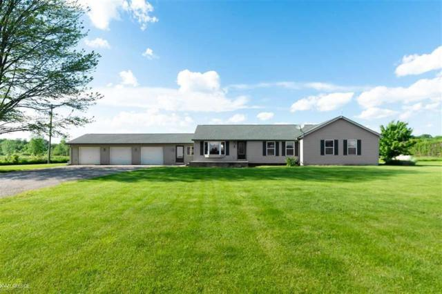 13350 Tibbets Rd, Riley Twp, MI 48041 (MLS #58031386986) :: The Toth Team