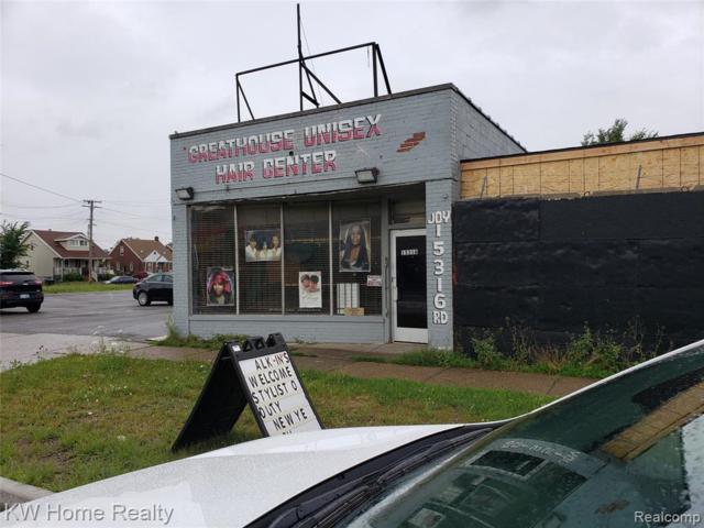 15316 Joy Street N, Detroit, MI 48228 (MLS #219068863) :: The Toth Team