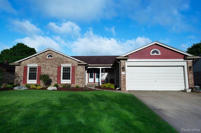 4650 Tipton Drive, Troy, MI 48098 (#219069094) :: The Alex Nugent Team | Real Estate One
