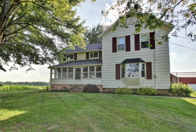 1630 S Wilmoth Highway, Palmyra Twp, MI 49221 (#543267092) :: GK Real Estate Team