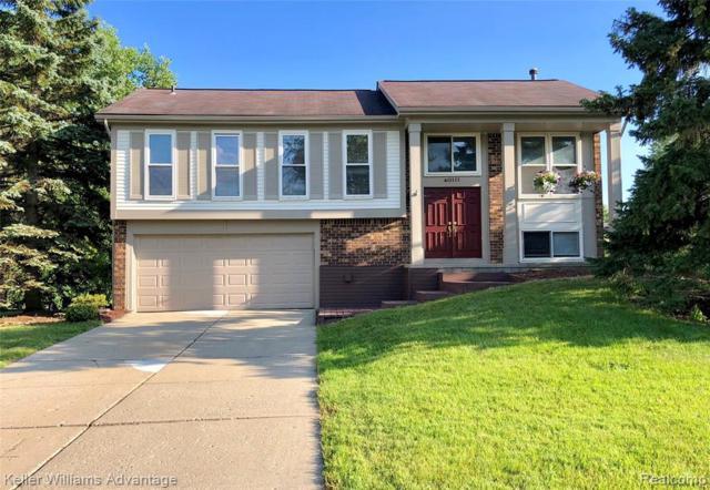 40111 Oak Tree, Novi, MI 48375 (#219069190) :: GK Real Estate Team