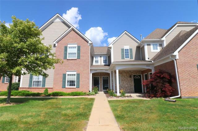 54832 Monarch Drive #53, Shelby Twp, MI 48316 (#219069265) :: The Alex Nugent Team | Real Estate One