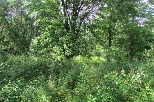 Parcel A W Grand River Ave, Berlin Twp, MI 48881 (MLS #59019032827) :: The John Wentworth Group