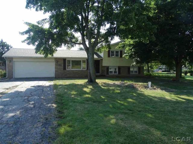 5741 N Adrian Hwy, Raisin Twp, MI 49221 (#56031387249) :: GK Real Estate Team