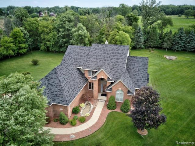 9828 Tuscany Valley Way, Salem Twp, MI 48178 (#219069999) :: The Buckley Jolley Real Estate Team