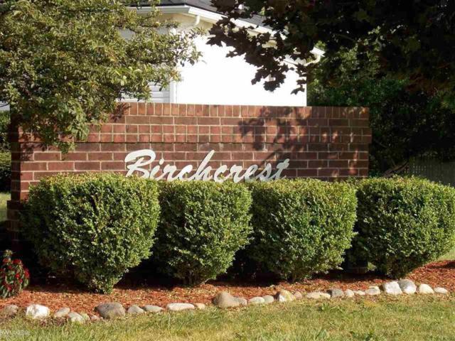 591 Boyd Street, Pontiac, MI 48341 (#58031387341) :: Springview Realty