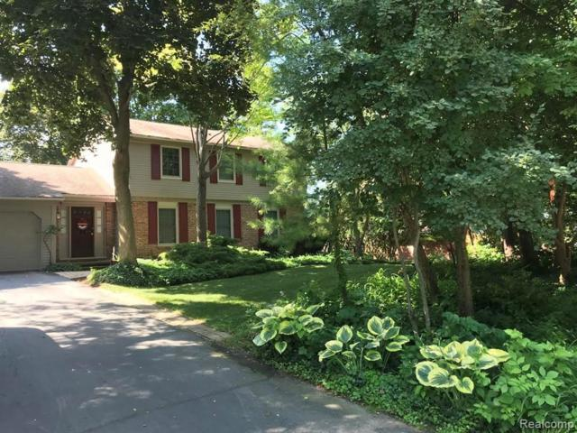 6509 Greene Haven Drive, Independence Twp, MI 48348 (#219070088) :: Springview Realty