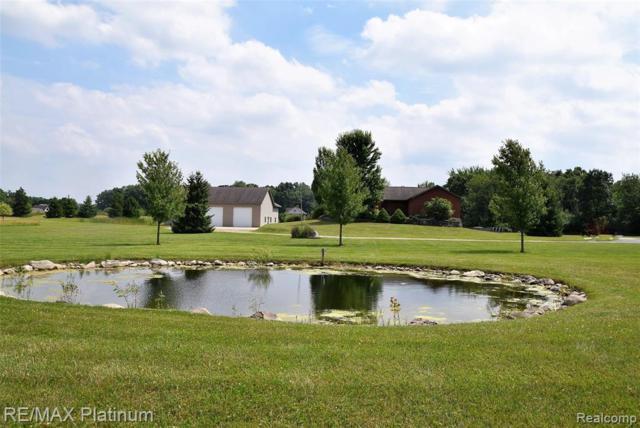 9055 Kearney Road, Northfield Twp, MI 48189 (#219070704) :: The Buckley Jolley Real Estate Team