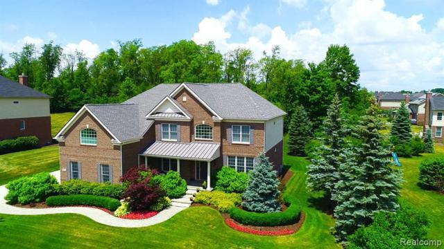 50286 Briar Ridge Lane, Northville Twp, MI 48168 (#219070899) :: Duneske Real Estate Advisors