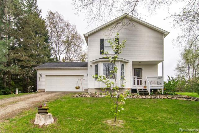 5959 San Luray Road, Unadilla Twp, MI 48137 (#219071029) :: The Buckley Jolley Real Estate Team