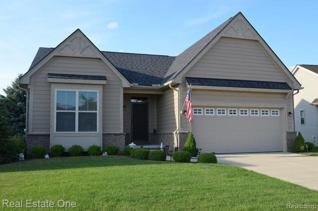 8353 Stamford Drive, Superior Twp, MI 48198 (#219071319) :: The Buckley Jolley Real Estate Team