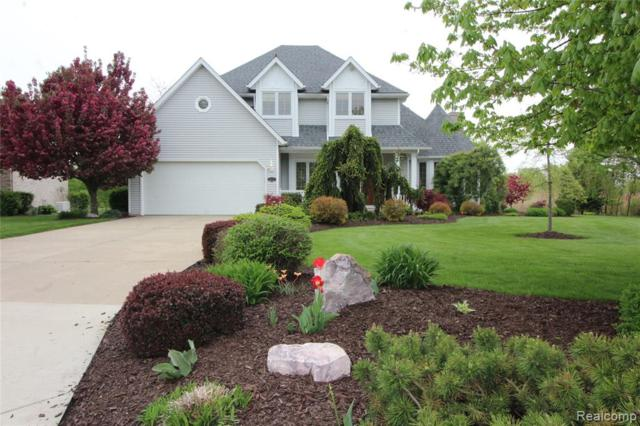 4031 W Shore Court, Frenchtown Twp, MI 48166 (#219071609) :: RE/MAX Classic