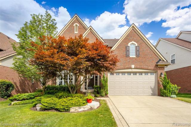 16508 Mulberry Way, Northville, MI 48168 (#219071852) :: Team Sanford