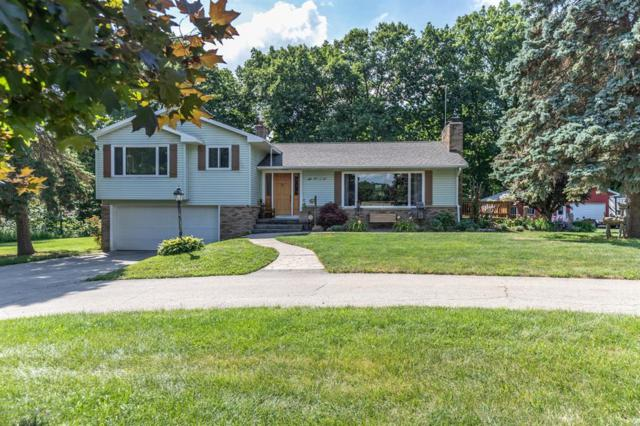 5901 N Maple River Road, Elsie Vlg, MI 48831 (MLS #630000238932) :: The Toth Team
