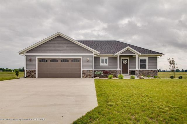 2300 Watson Road, OVID TWP, MI 48879 (MLS #630000238934) :: The Toth Team