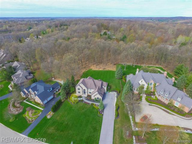 8791 Hunters Creek Drive, Independence Twp, MI 48348 (#219072265) :: The Alex Nugent Team   Real Estate One