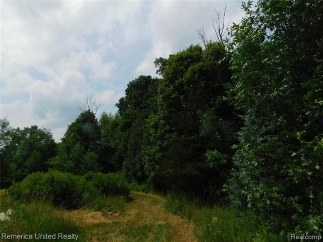 000 Crofoot Road, Marion Twp, MI 48843 (#219072617) :: The Buckley Jolley Real Estate Team