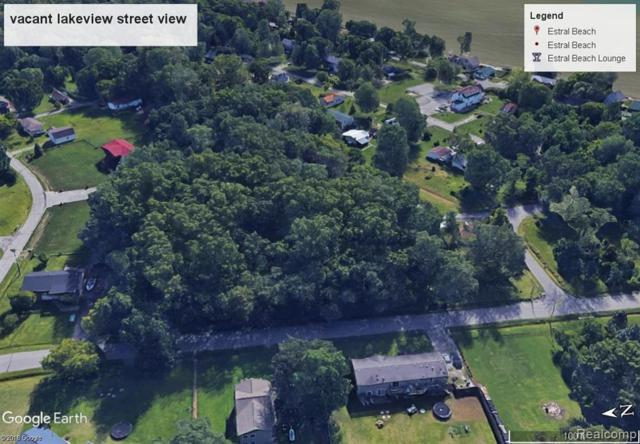 Vacant Lakeview St. Lots 3-10 Street, Estral Beach Vlg, MI 48166 (#219072681) :: Alan Brown Group