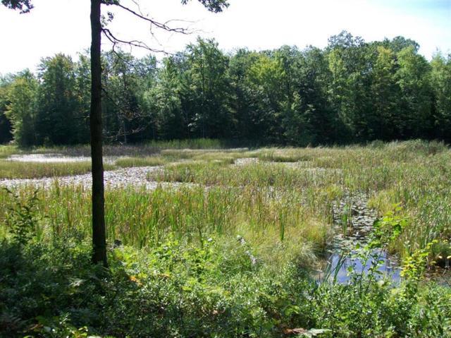 0 Cranberry Lake, Harrison, MI 48625 (#543267436) :: Springview Realty