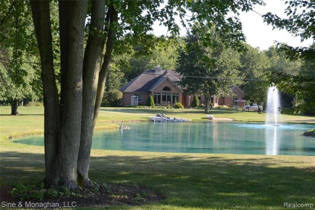 7777 Markel Road, Ira Twp, MI 48023 (#219074127) :: The Buckley Jolley Real Estate Team