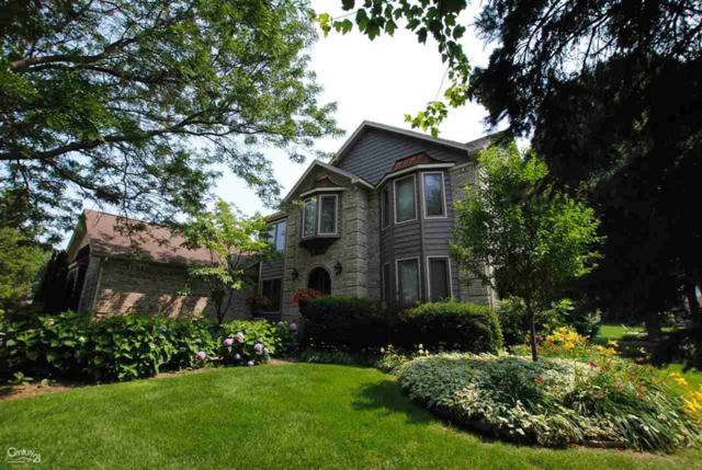 56622 Copperfield Dr, Shelby Twp, MI 48316 (#58031388675) :: Alan Brown Group