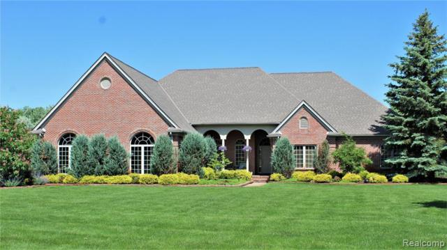 8763 Old Oak Drive, Superior Twp, MI 48170 (#219075728) :: The Buckley Jolley Real Estate Team