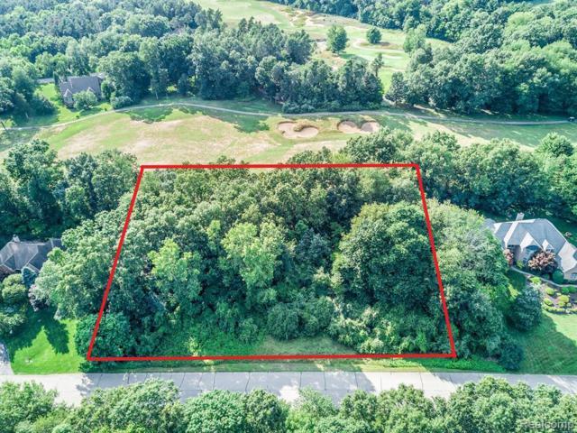 8176 Walkabout Way, Putnam Twp, MI 48169 (#219075784) :: The Buckley Jolley Real Estate Team