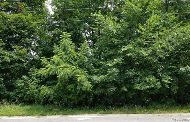 9999 Nine Mile Road, Green Oak Twp, MI 48189 (#219075872) :: Team Sanford