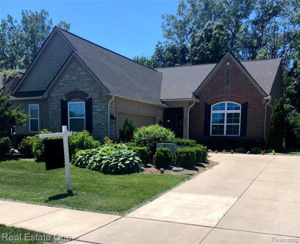 7231 Ardsley Lane, Independence Twp, MI 48348 (#219076076) :: Alan Brown Group