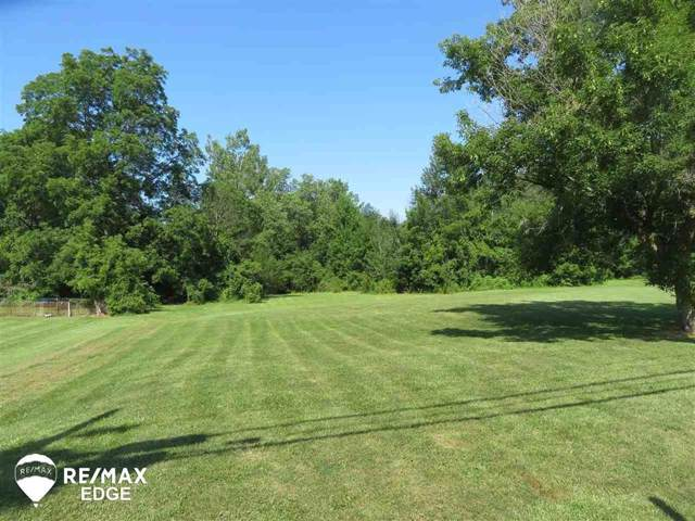 0 N State, Forest Twp, MI 48463 (#5031389598) :: The Buckley Jolley Real Estate Team