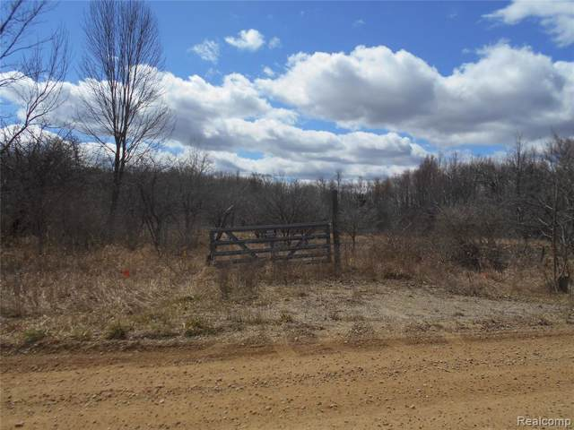 0 Mount View Road, Mayfield Twp, MI 48446 (#219079189) :: RE/MAX Nexus