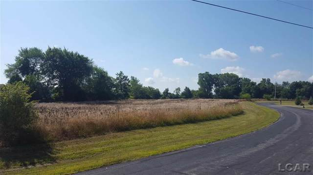 Country Drive, Franklin Twp, MI 49268 (#56031389754) :: RE/MAX Nexus