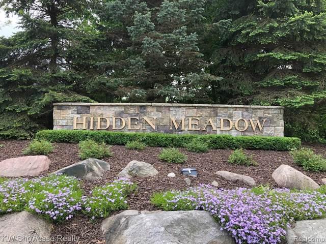 9762 Meadow View Court, Salem Twp, MI 48167 (MLS #219080268) :: The Toth Team