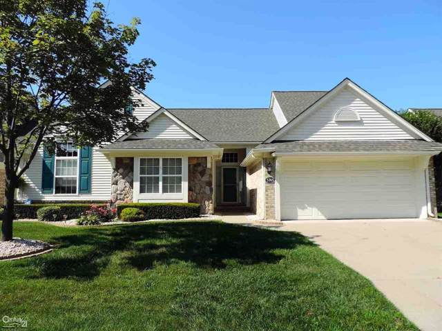 5765 Woodview, Sterling Heights, MI 48314 (#58031390054) :: Alan Brown Group