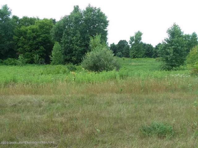 713 Little Creek Path, Perry, MI 48872 (#630000239585) :: Alan Brown Group