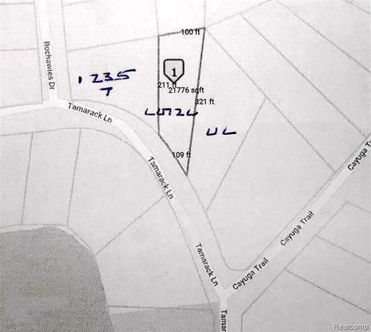 000 Tamarack, Oakland Twp, MI 48363 (#219081607) :: The Buckley Jolley Real Estate Team