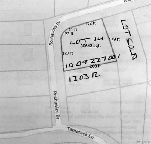 000 Rochawies, Oakland Twp, MI 48363 (#219081621) :: The Buckley Jolley Real Estate Team