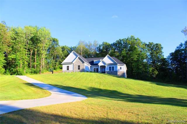 11380 Majestic Valley Court, Tyrone Twp, MI 48430 (#219081970) :: The Buckley Jolley Real Estate Team