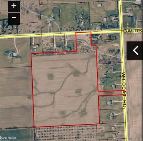 VL Wildcat, Worth Twp, MI 48422 (#219082887) :: The Buckley Jolley Real Estate Team