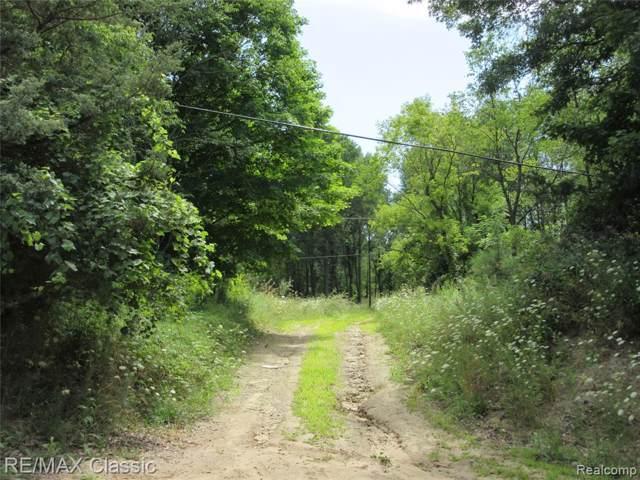 2015 Lone Tree Road, Highland Twp, MI 48380 (#219083720) :: Team Sanford