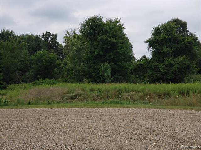 Par 11 Maplefield, Conway Twp, MI 48418 (#219084034) :: The Mulvihill Group