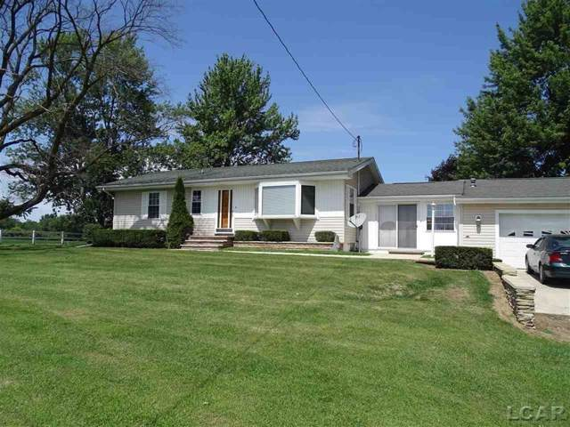 1284 Codling, Fairfield Twp, MI 49221 (#56031391192) :: The Alex Nugent Team   Real Estate One