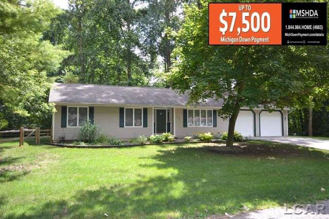 4791 Hooks Mill Road, Adrian Twp, MI 49221 (MLS #56031391236) :: The John Wentworth Group