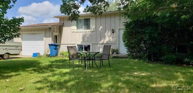 311 Marion, Clinton, MI 49236 (#56031391291) :: The Alex Nugent Team   Real Estate One