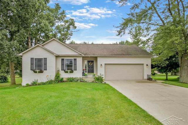 9385 W Coldwater, Flushing Twp, MI 48433 (MLS #61031391317) :: The Toth Team
