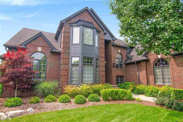 55943 E Ashbrooke Dr, Shelby Twp, MI 48316 (#58031391330) :: Alan Brown Group