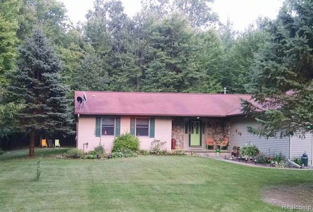 4634 N W Salisbury Drive, Butman Twp, MI 48624 (#219084697) :: The Buckley Jolley Real Estate Team